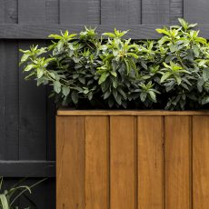 Planter Box on Bench Seat in Courtyard