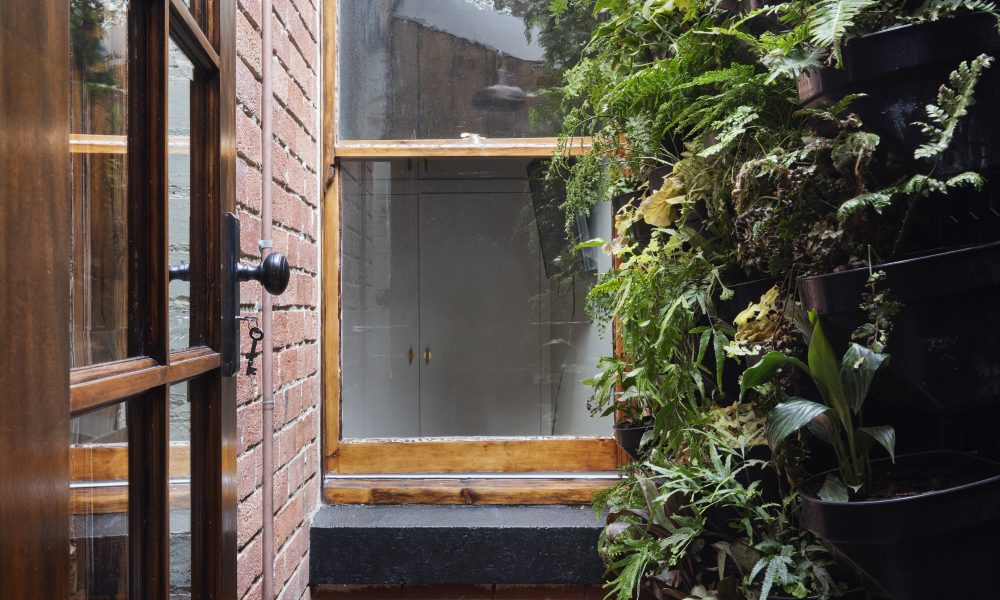 Courtyard Renovation with Vertical Garden