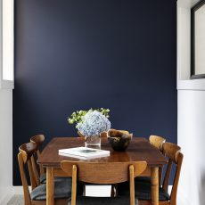 Navy blue feature wall to match island bench